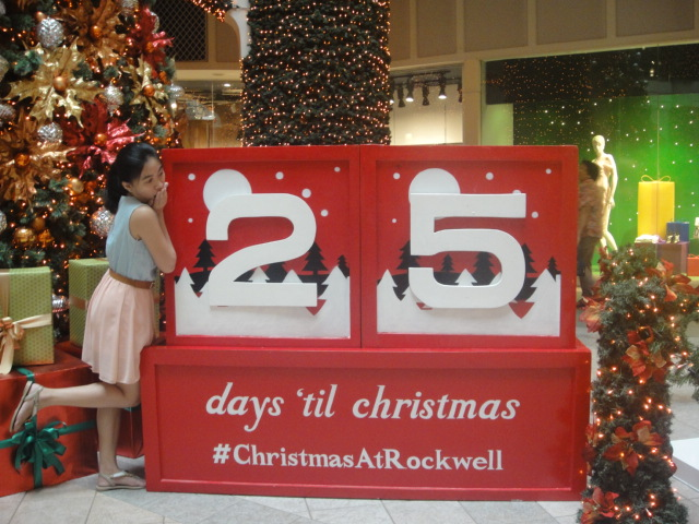 25 Days to Go Before Christmas!
