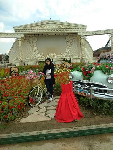 bike-and-garden