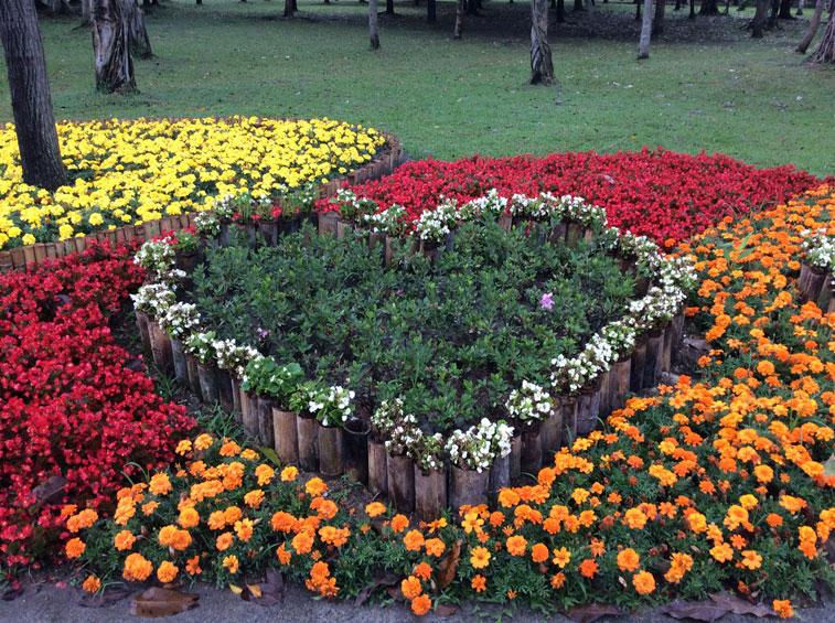 flower-heart